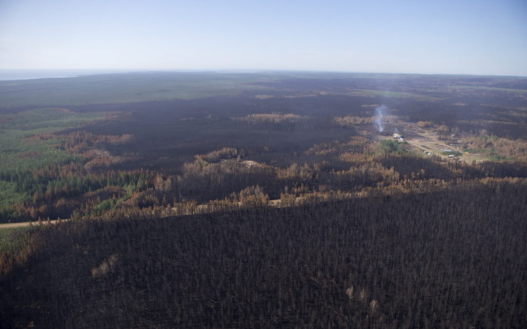 New North praises changes to wildfire suppression policy in Sask.