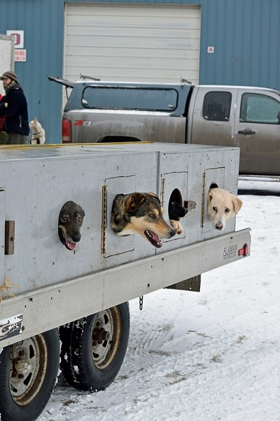 Canadian Challenge Sled Dog Race start location changed