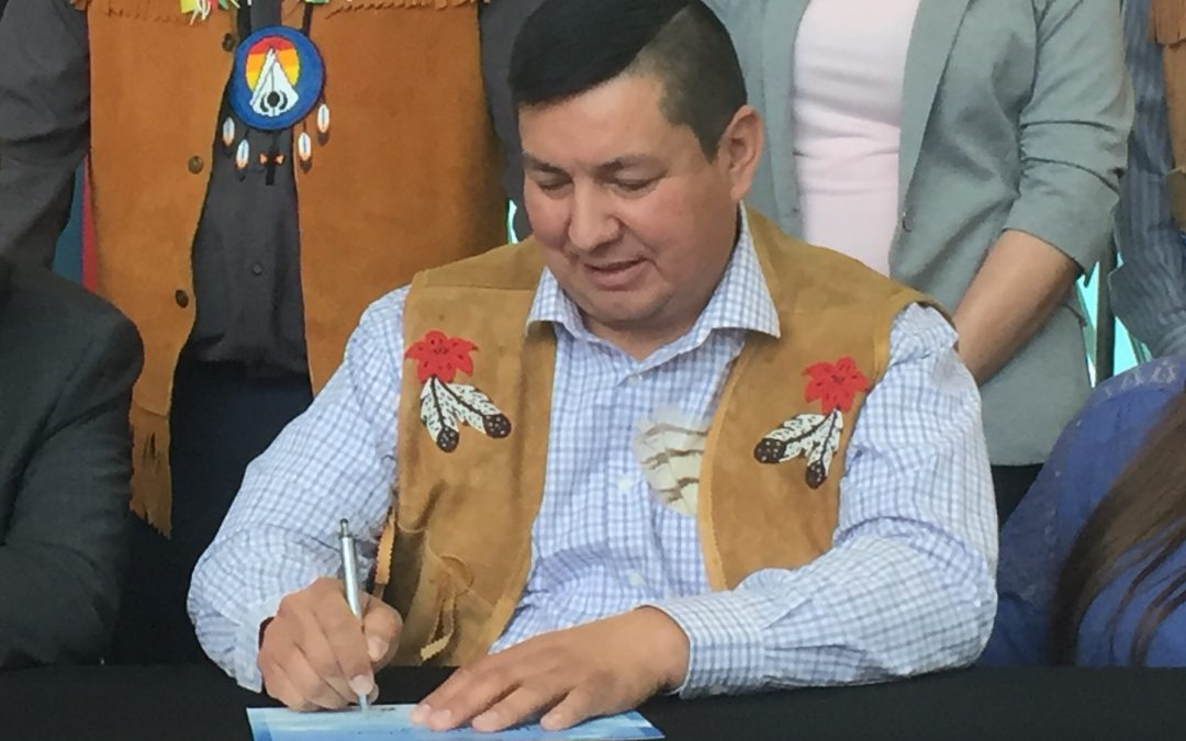 First Nations Power Authority backs away from biomass project in Regina