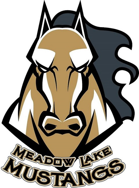 Meadow Lake Mustangs cease operations