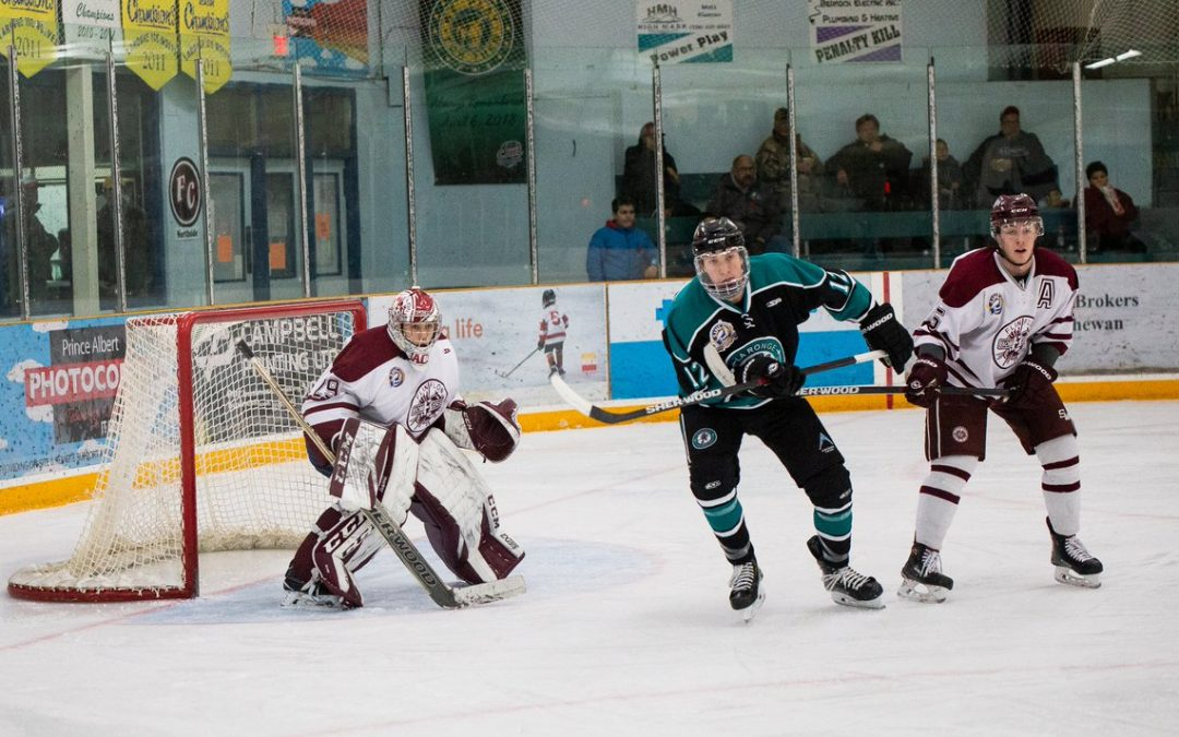 Strong fiscal year for La Ronge Ice Wolves