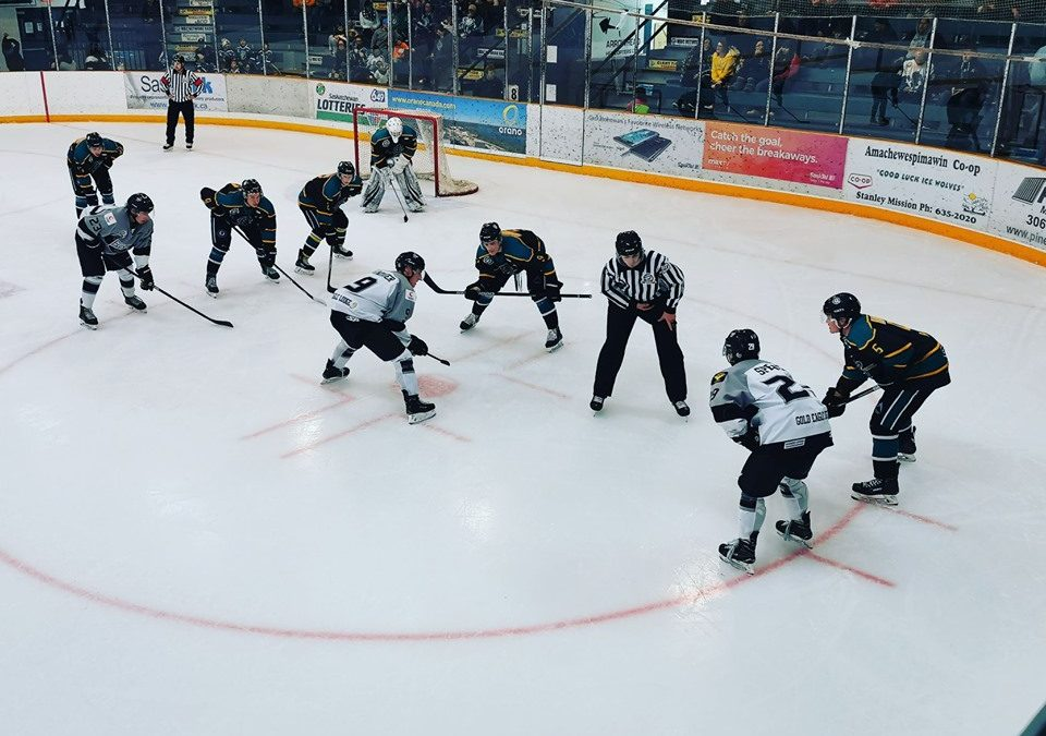 Ice Wolves earn point versus North Stars