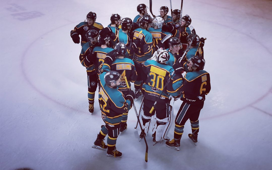 Ice Wolves come from behind and stun Hounds