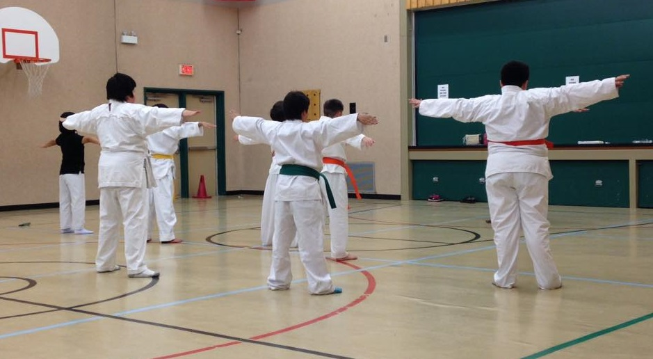 La Ronge-based non-profit offering free online martial arts training
