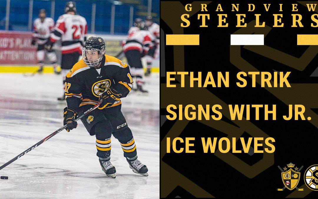 Ice Wolves sign Strik
