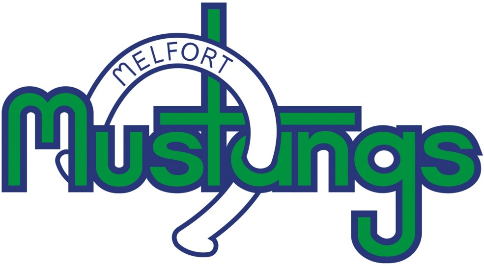 Melfort Mustangs postpone hockey activities