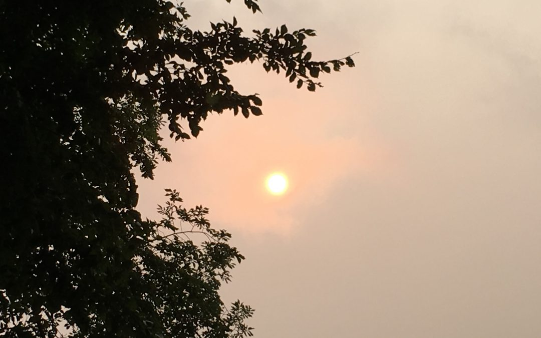 Residents urged to be careful as forest fires cause smoky air conditions